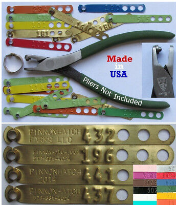 Leg Bands 100pk Customized Personalized Custom Chicken Poultry Leg ID Rings Tags