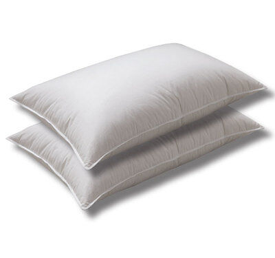 Logan and Mason HOTEL Pillows TWIN PACK 48 X 72cm Australian Made Cotton Casing