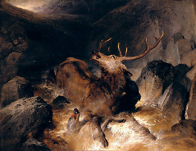 Deer and Deer Hounds in a Mountain Torrent Landseer Hirsche Gebirge B A3 00159