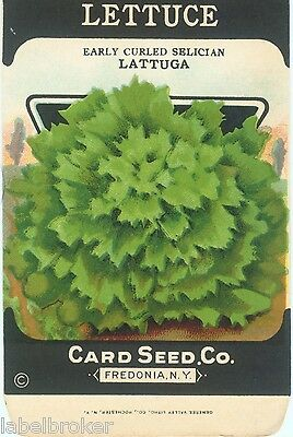 VINTAGE SEED PACKET ADVERTISING GENERAL STORE GARDEN LITHOGRAPH LETTUCE LATTUGA