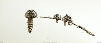 "WARWICK HIGGS ""Bandits"" RACOON animal tails NEW PRINT! SIZE:16cm x 51cm  RARE"