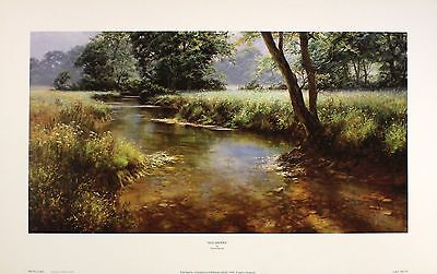 "DAVID DIPNALL ""Idle Waters"" RIVER stream countryside! SIZE:30cm x 57cm  RARE"