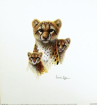 WARWICK HIGGS Magic Moments CHEETAH cubs art print NEW SIZE:36cm x 33cm  RARE