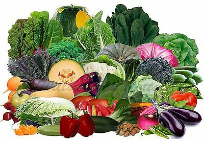 VEGETABLE garden BULK PACK 3000+ seeds 63 packets of heirloom vegetables ALL SEA