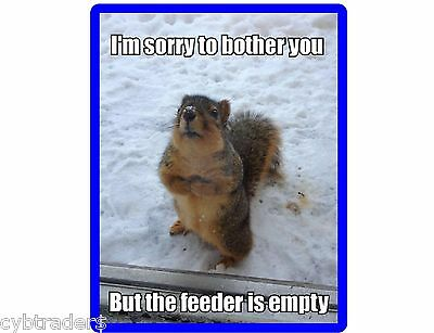 Funny Squirrel Feeder Empty Winter Time  Refrigerator / Tool Box Magnet Ad