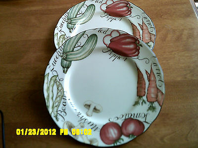 """Two Franciscan """"Vegetable Medley Salad Luncheon Plate 8 inches"""