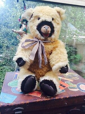 Meet Mr Bumble A Very Rare Early Genuine Sheepskin Open Mouthed Vintage Bear