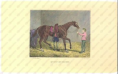 1841 THE CRACKS OF THE DAY Queen of Trumps *Stampa inc. PARR dis. HERRING