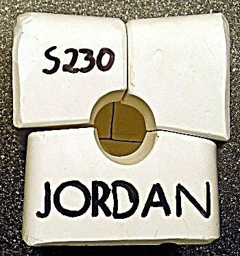 """Jordan"" by Sterling-Small Doll Head Mold-S230"