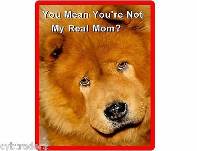 Funny Chow Chow Dog Mom Refrigerator / Tool Box Magnet Gift Card Insert