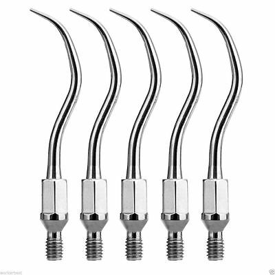 5* ZEG Dental Scaling Insert GK1 Tips für Air scaler KAVO Sonicflex Handpiece