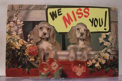 Animal Dog Puppy We Miss You Postcard Old Vintage Card View Standard Souvenir PC