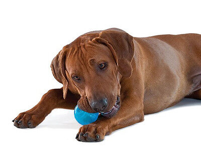 Petstages Orka Tennis Ball Teething Dog Toy Puppy Free Ship To The Usa