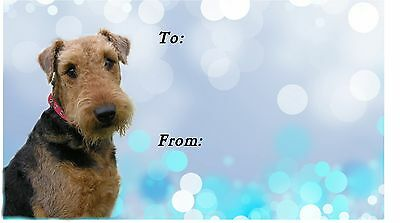 Airedale Terrier Dog Self Adhesive Gift Labels designed by Starprint