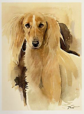 Vintage Stunning SALUKI Dog Print Gallery Wall Art Saluki Illustration Art Print