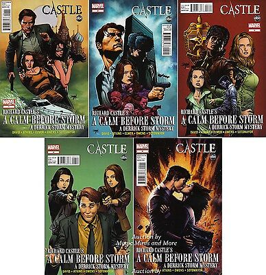 CASTLE: A CALM BEFORE STORM (5) Issue Comic SET #1 2 3 4 5 1st print MARVEL ABC