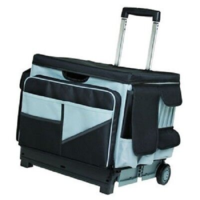 Black Gray Rolling 46 Compartment Canvas Organizer Cart Bag for Art Supplies +