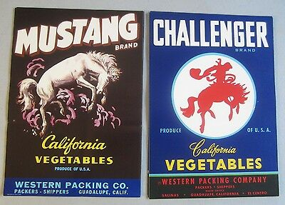 Wholesale Lot of 100 Old MUSTANG / CHALLENGER Crate LABELS - WESTERN - Horse