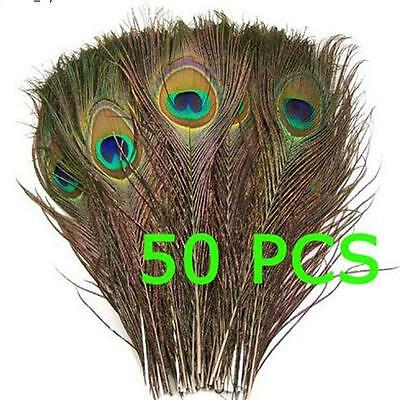 """50pcs Fashion Natural Peacock Tail Eyes Feathers  26-30cm/10.2-12"""""""