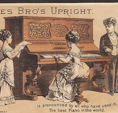 Haines Brothers Piano Co New York NY Recital Victorian Advertising Trade Card