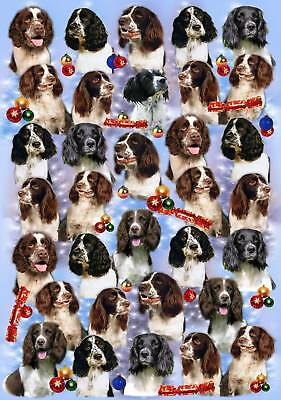 English Springer Christmas Wrapping Paper By Starprint