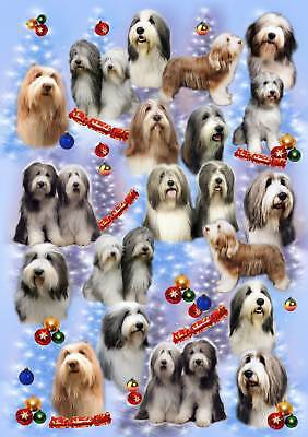 Bearded Collie Dog Xmas Wrapping Paper By Starprint