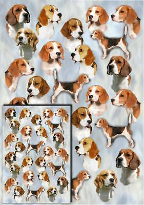 Beagle Dog Gift Wrapping Paper By Starprint - Auto combined postage