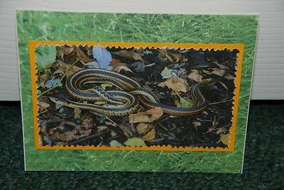 HAND MADE GREETING CARD OF LOVE 2 SNAKES