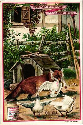 6 Cards c1895 Litho Puzzles Hidden Objects IMAGES A CHERCHER Fox Hinds Cock