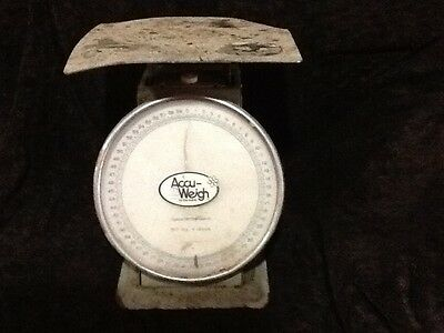 vintage store scales accu-weigh 60 pounds needs redone