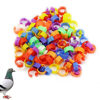 100X Chicken Hen Pigeon Leg Poultry Bird Dove Chicks Duck Parrot Clip Rings Band