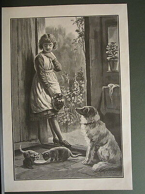 COLLIE DOG CAT KITTENS PETS VICTORIAN GIRL ANTIQUE PRINT