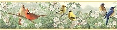 Colorful Birds Throughout the Trees Border HB112141B