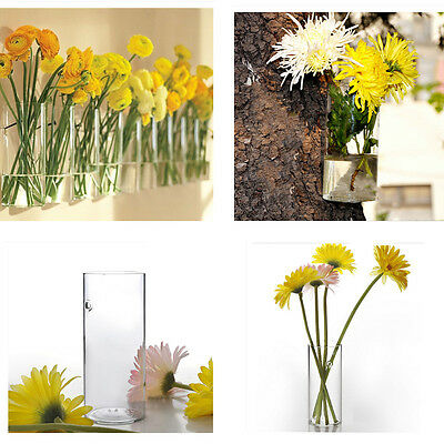 Clear Wall Hanging Glass Vase Flower Planter Hydroponic Container Pot Decor 20cm