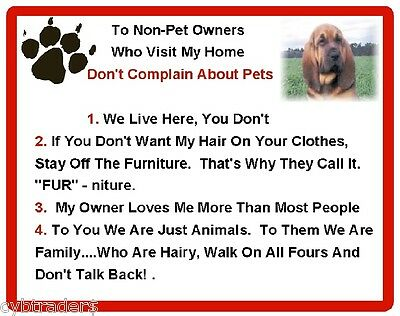 Funny Dog Bloodhound House Rules Refrigerator / Magnet Gift Card Idea