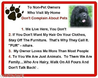 Funny Dog Newfoundland House Rules Refrigerator / Magnet Gift Card Idea