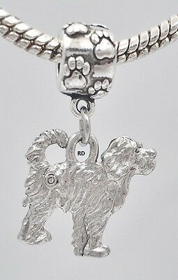 Portuguese Water Dog Charm on Paw Print Slider Bead for Bracelet OR Necklace
