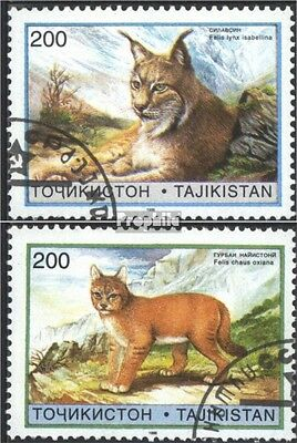 Tajikistan 98-99 (complete issue) used 1996 Small Cats