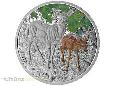 20 $ Dollar Baby Animals White Tailed Deer Kanada 2015 1 oz Silber PP