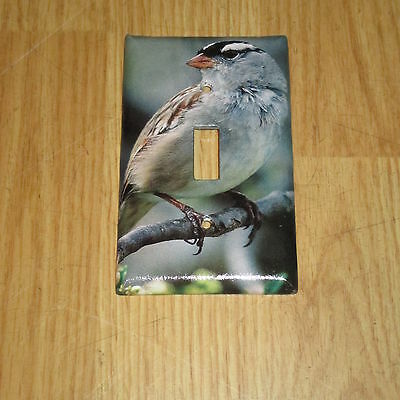 White-Crowned Sparrow Wild Bird Light Switch Cover Plate