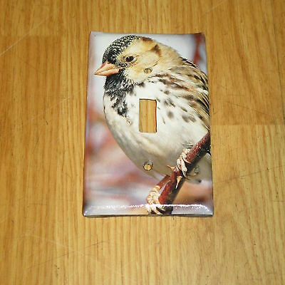 Harris's Sparrow Wild Bird Light Switch Cover Plate