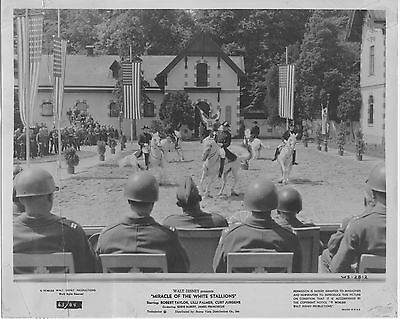 MIRACLE OF THE WHITE STALLIONS/LIPPIZANERS orig movie still photo ROBERT TAYLOR
