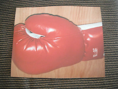 Lot Boxing Glove Stock Photos Autographs Celebrity 8x10 Color Pictures