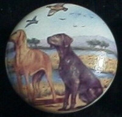 Cabinet Knobs  w/ Saluki German Short Haired Pointer DOG