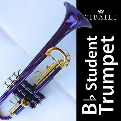 Bb Trumpet CASE • ABS Hard Case • BRAND NEW • GREAT QUALITY