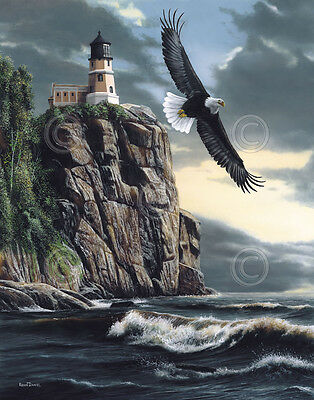 WILDLIFE ART PRINT Lighthouse Cliff by Kevin Daniel Eagle Seascape Poster 19x13