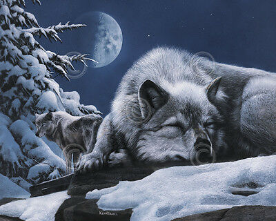 WILDLIFE ART PRINT - Sleepless Night by Kevin Daniel Wolf Wolves Poster 19x13
