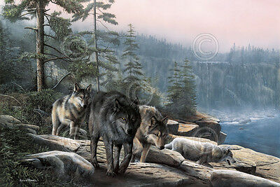 WILDLIFE ART PRINT  Stalking the Bluffs by Kevin Daniel Wolf Wolves Poster 19x13
