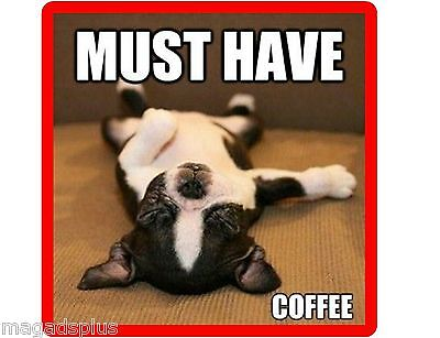Funny Boston Terrier Must Have Coffee Refrigerator Magnet Gift Card Insert