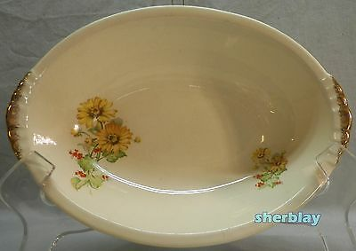 RARE The PADEN CITY POTTERY Yellow Daisies Red Flowers OVAL SERVING BOWL 9 3/4